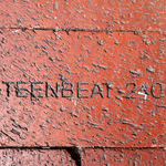 Teen-Beat 240 brick MCI Verizon Center, Washington DC