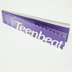 Full Teen-Beat Moon concert booklet